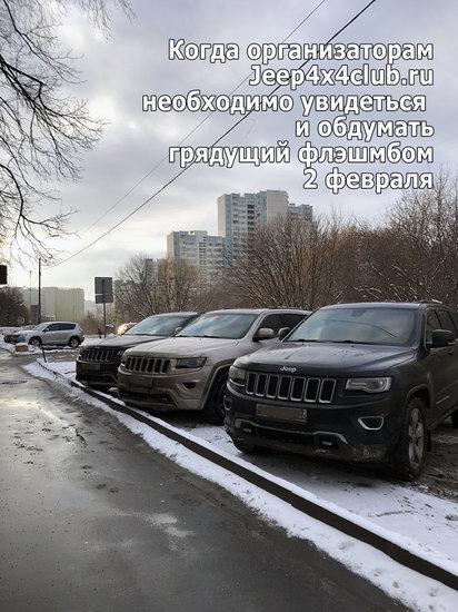 Сбор у тануки.jpg